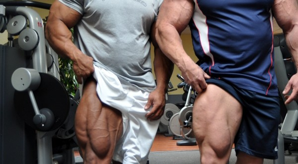 Estimating Calorie Needs for Bodybuilding Cutting, Bulking and Maintenance