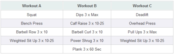 Primal 531 Strength Building Workout