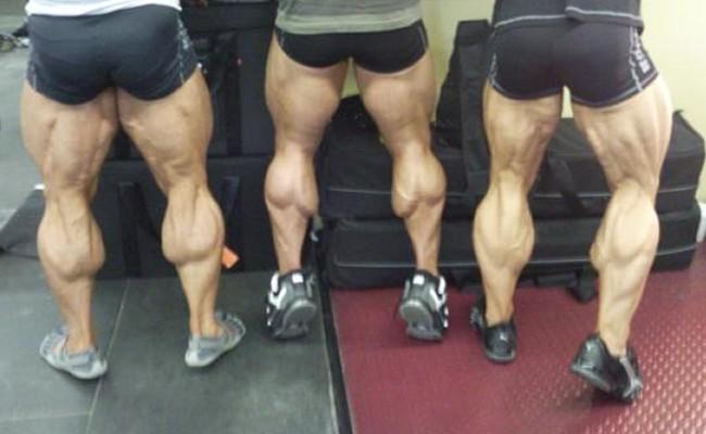 muscular-calves