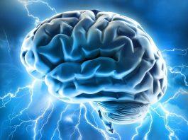 memory supplements