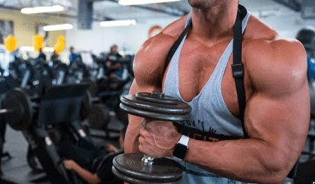 best steroid cycle for mass