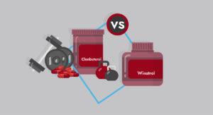 Clenbuterol vs winstrol