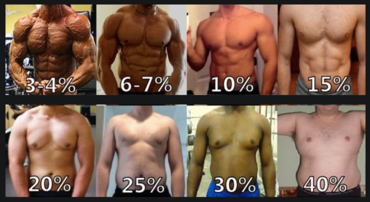 body-fat-chart-for-man-boobs