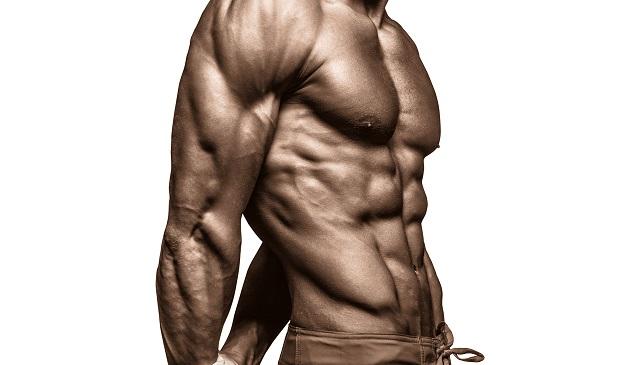 lean body