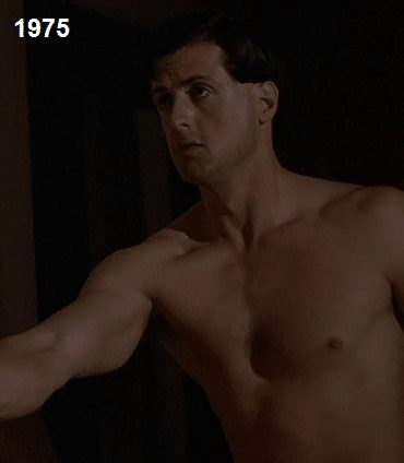 sylvester stallone in farewell my lovely
