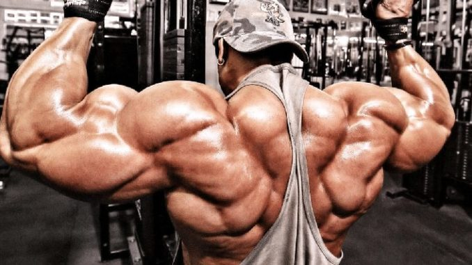 Steroids back