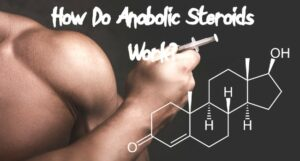 How Do Anabolic Steroids Work