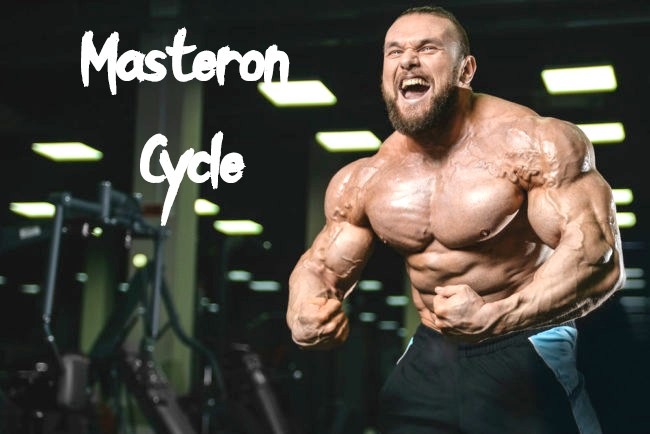 Masteron Cycle Results Dosage And Side Effects