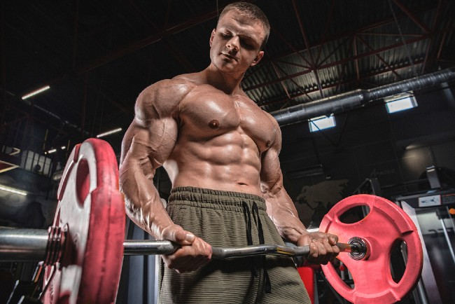 Best Steroid Cycles