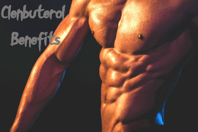 What Is Clenbuterol? Cycle, Dosage and Effects
