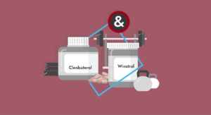 Winstrol and Clenbuterol