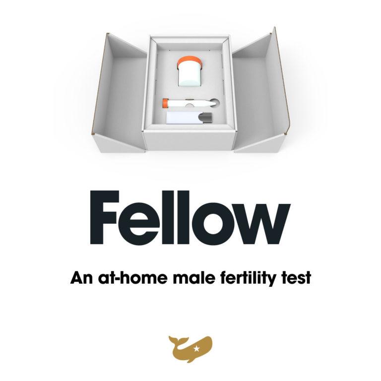 Fellow Review