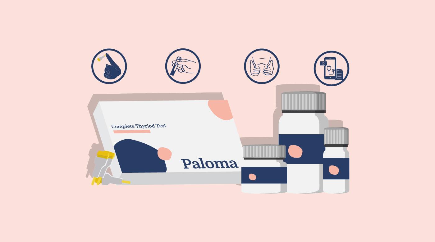 Paloma Health Thyroid Test Kit Review